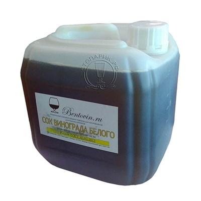 Сок винограда белого концентрированный 5 кг - фото 15473
