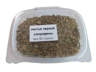 Листья черной смородины 50 гр. - фото 21431