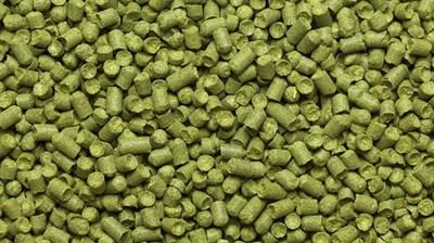 Хмель Сапфир (Saphir) 3,9% 100 гр - фото 6329