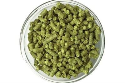 Хмель Нортен Бревер (Northern Brewer) 9,5% 100 гр - фото 9574