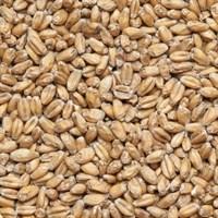 Солод пшеничный Wheat malt Финляндия