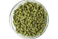 Хмель Нортен Бревер (Northern Brewer) 9,5% 100 гр