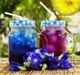 Клитория (Синий чай) 20 гр. - фото 15462