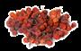 "Рябина плод красн. 100 гр. ""Лавка здоровья"" - фото 8636"